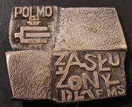 Wpinka Polmo Szczecin Załużony dla FMS F. Joppek